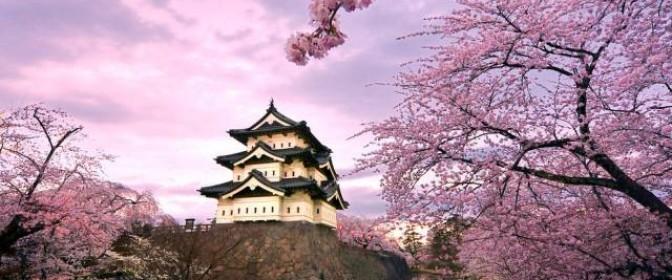 CIRCUIT 2016 JAPONIA – SARBATOAREA CIRESILOR IN FLOARE  de la 2380 euro – oferta expirata
