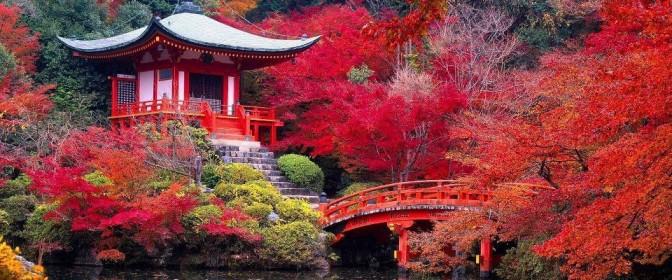 CIRCUIT 2018 JAPONIA celor 3 insule de la 2885 euro